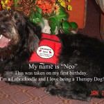 lax-therapy-dog-wikipedia