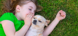 Dogs With Jobs:  Helping Autistic Patients