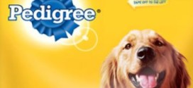 Recall Alert: PEDIGREE® Adult Complete Nutrition dry dog food