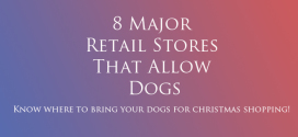 8 Major Retail Stores That Allow Dogs