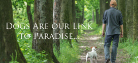 Dogs Are Our Link To Paradise..