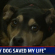 Steve Owes His Life To Jake…A Dog He Rescued 4 Years Ago