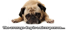 The average dog is a nicer person..