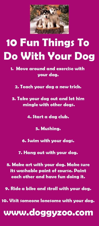 10 Fun Things To Do