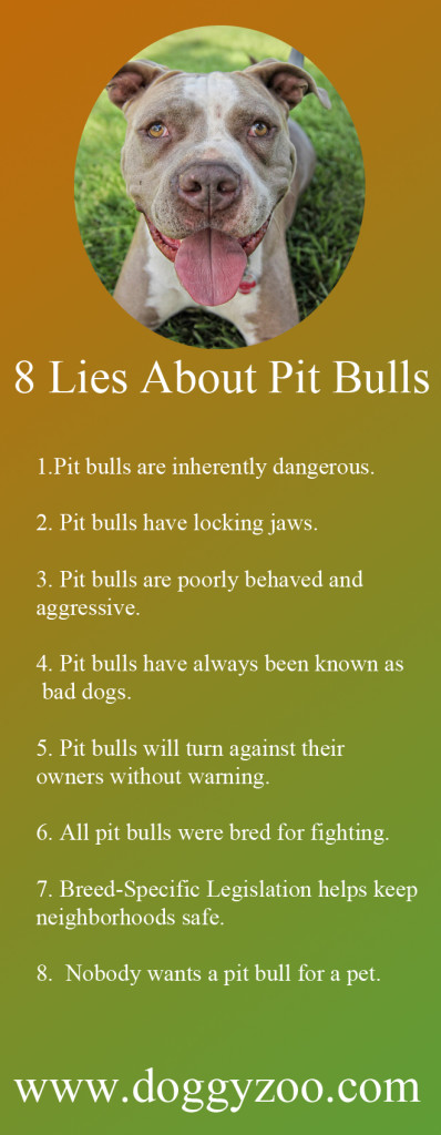 why pit bulls are the complete opposite of dangerous When an attack involves pit bulls, it is no longer necessary to prove that the particular pit bull or pit bulls are dangerous view my complete profile more nuggets.