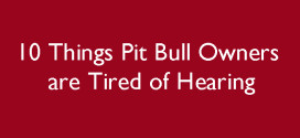10 Things Pit Bull Owners are Tired of Hearing