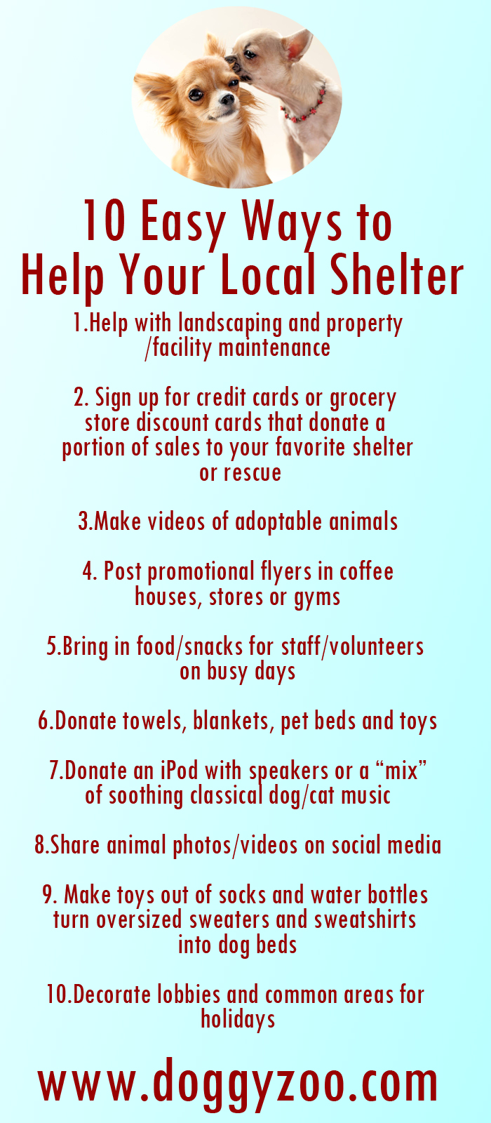 10 Easy Ways To Fix Your Door In Under An Hour: 10 Easy Ways To Help Your Local Shelter