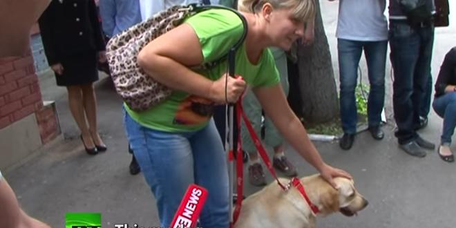 this blind girl u0026 39 s dog was stolen