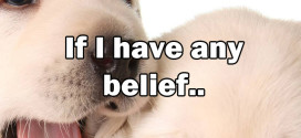 If I have any beliefs