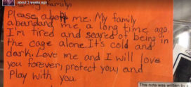 Kids write notes from shelter pets to help them get adopted.